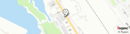 Клен на карте Брянска