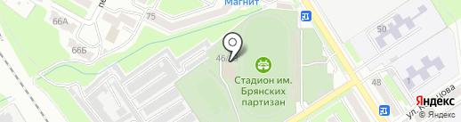 Стадион им. Брянских партизан на карте Брянска