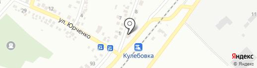 Делви на карте Новомосковска