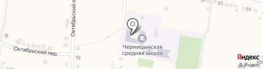 Черницынская средняя общеобразовательная школа на карте Прямицыно