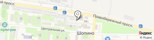 Продуктовый магазин на Центральной на карте Шопино