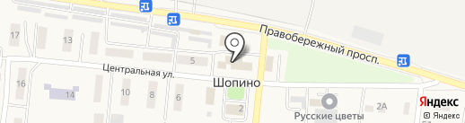 Парикмахерская на Центральной на карте Шопино