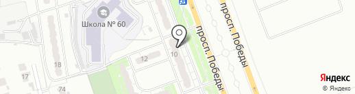 Шарик46 на карте Курска