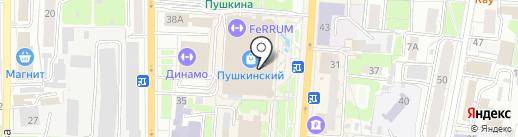 Mr.Crocco на карте Курска