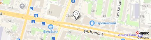 Просвещение на карте Калуги