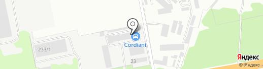 Cordiant на карте Курска