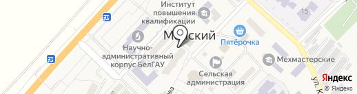 Магазин мясной продукции на карте Майского