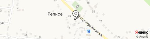 QIWI на карте Репного