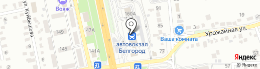 ЛинзАмат на карте Белгорода