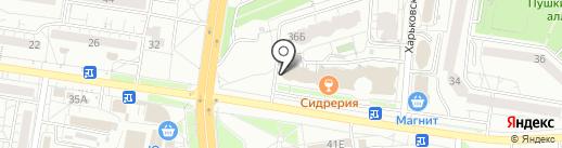 Билайн на карте Белгорода