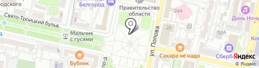 Hamster на карте Белгорода