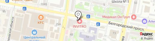 Промедика на карте Белгорода