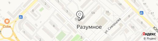 Сеть аптек на карте Разумного