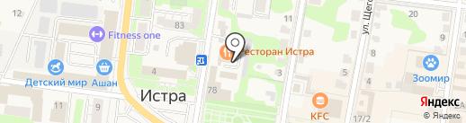 Барс на карте Истры