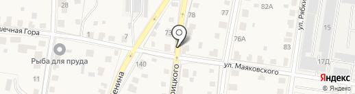 Истринская городская похоронная служба на карте Истры
