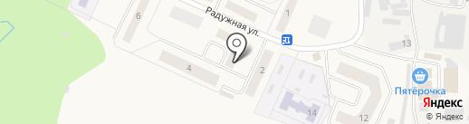 Долголетие на карте Звенигорода