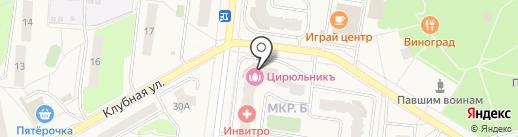 Ледгудс на карте Селятино