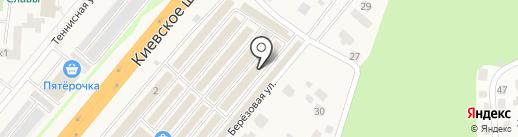 Компания на карте Селятино