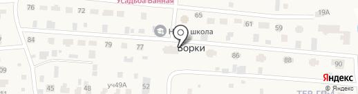 Классическая на карте Борок