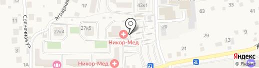 Никор-мед на карте Андреевки