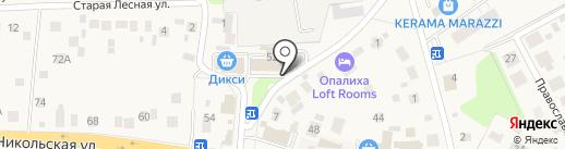 Первый Мед на карте Красногорска