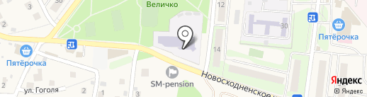 Чемпионика на карте Химок