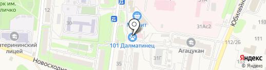 101 далматинец на карте Химок
