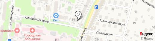 Милена на карте Химок