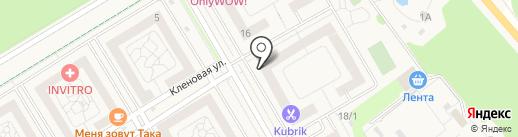 Фасоль на карте Отрадного
