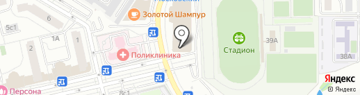 Панда на карте Московского