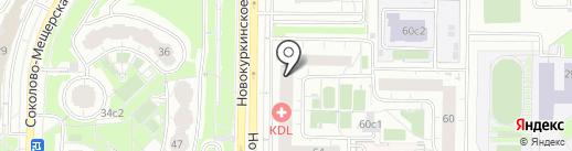 Автопилот на карте Химок