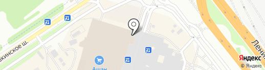 Секвойя на карте Химок