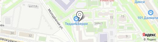 Эрминко на карте Химок