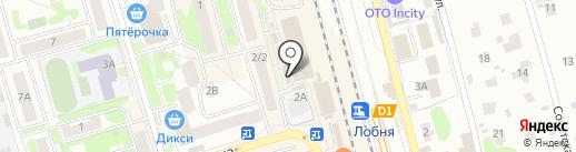 Утенок на карте Лобни