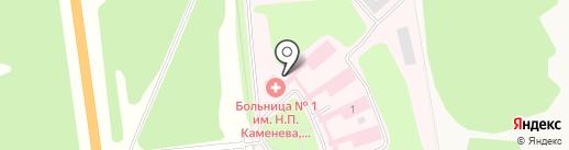 Тульская областная клиническая психиатрическая больница №1 им. Н.П. Каменева на карте Петровского