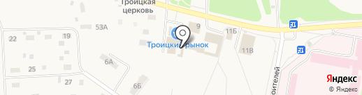 Плюшкины на карте Троицкого
