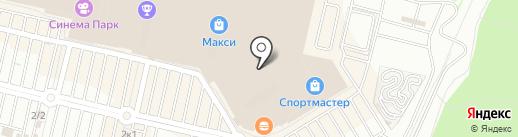 Котя на карте Тулы