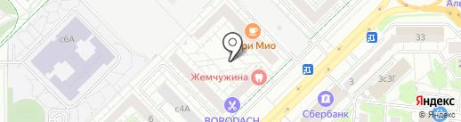 Ярославский на карте Мытищ
