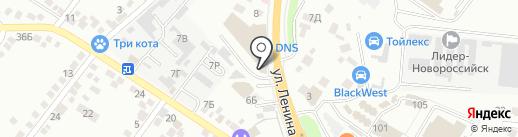 Пинскдрев на карте Новороссийска