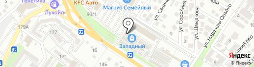 Кенгуру на карте Новороссийска