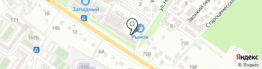 Какаду на карте Новороссийска