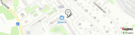 Крокус на карте Домодедово