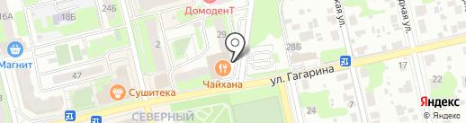 Айболит на карте Домодедово