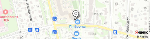 Пингвин на карте Домодедово