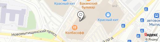 Любимчик на карте Мытищ