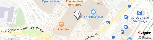 Zavinni на карте Мытищ