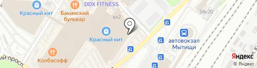 Antiga на карте Мытищ