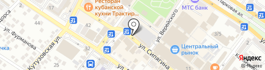Оливия на карте Новороссийска