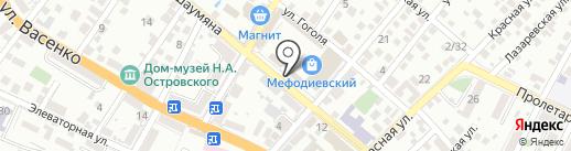 Кипарис на карте Новороссийска