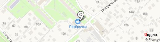 Регина на карте Пушкино